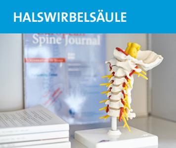 wzfr-orthopaede-wirbelsaeulenspezialist-roggendorf-halswirbelsaeule